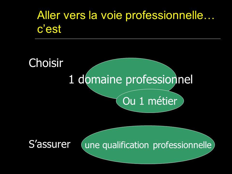 Aller vers la voie professionnelle… cest 1 domaine professionnel Ou 1 métier Choisir une qualification professionnelle Sassurer