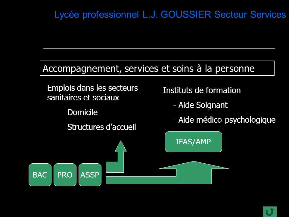 Lycée professionnel L.J.