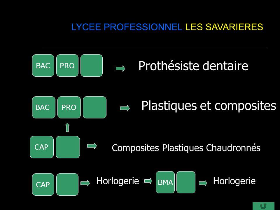 LYCEE PROFESSIONNEL LES SAVARIERES BACPRO Prothésiste dentaire BACPRO Plastiques et composites Horlogerie CAP Horlogerie BMA Composites Plastiques Chaudronnés CAP