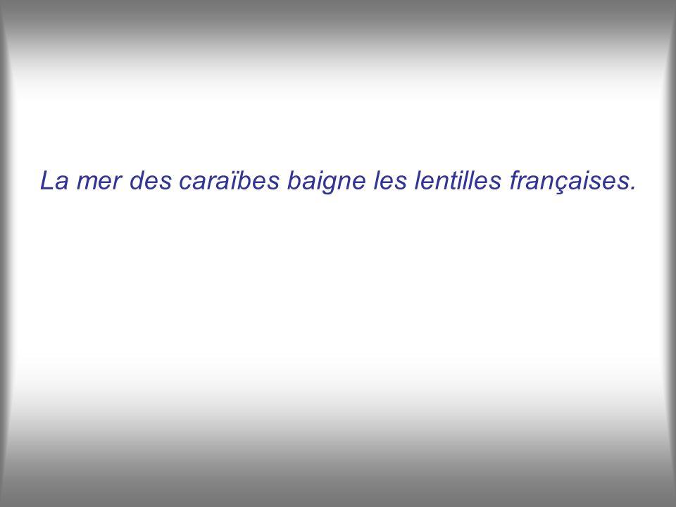 La mer des caraïbes baigne les lentilles françaises.