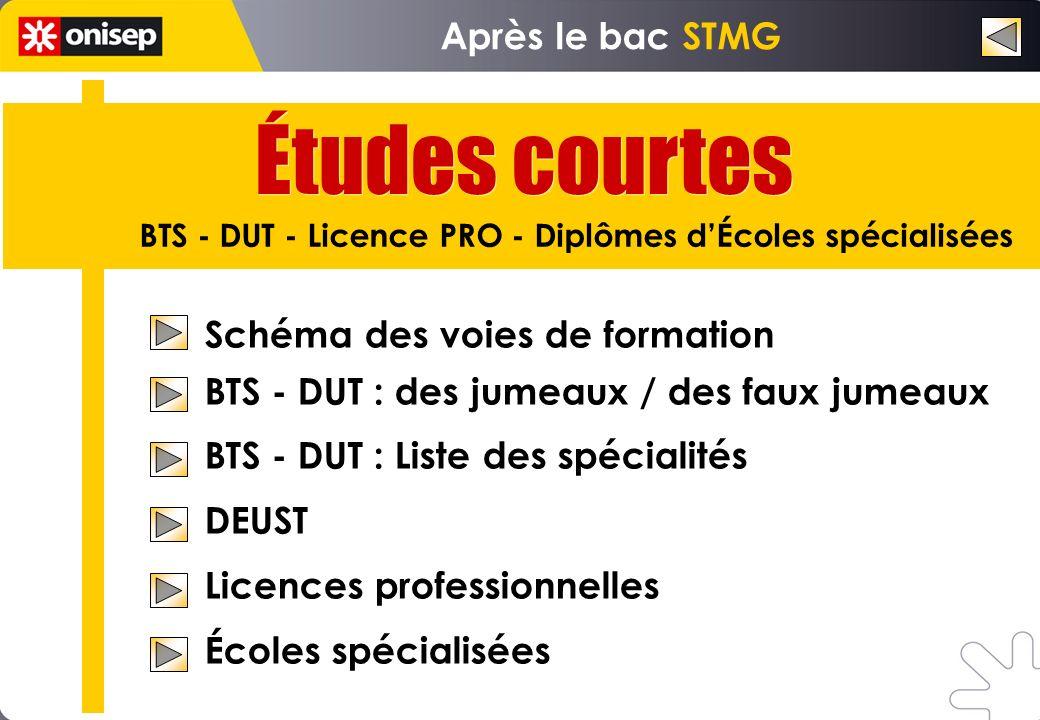 Schéma des voies de formation BTS - DUT : des jumeaux / des faux jumeaux BTS - DUT : Liste des spécialités DEUST Licences professionnelles Écoles spéc