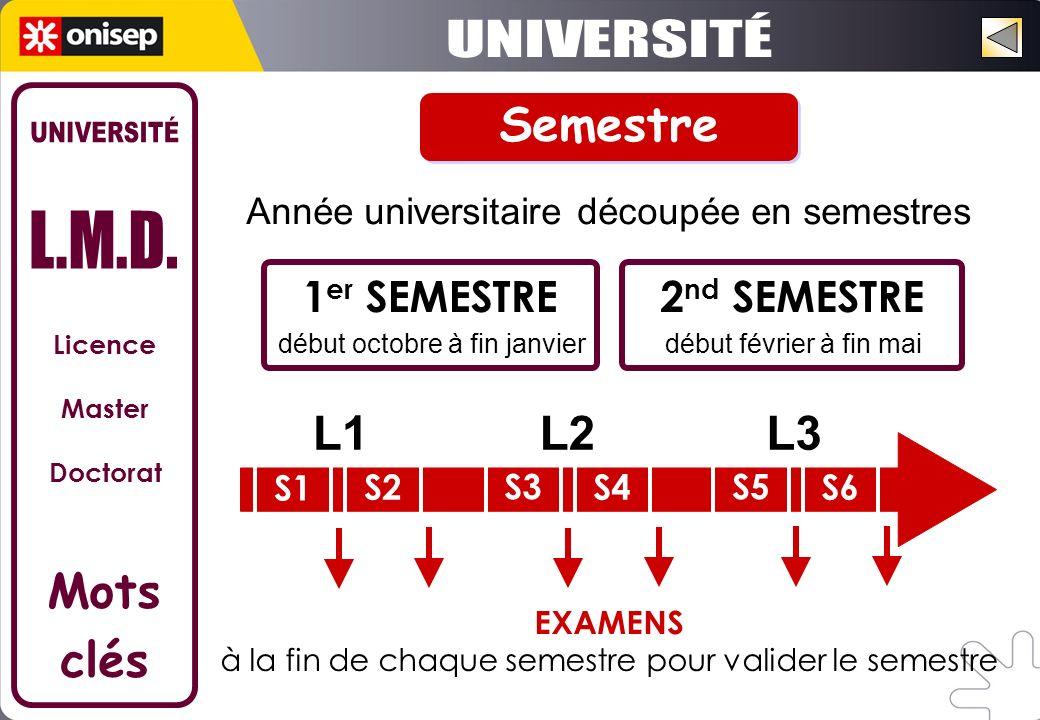 Licence Master Doctorat Mots clés début février à fin mai Année universitaire découpée en semestres 1 er SEMESTRE début octobre à fin janvier 2 nd SEM