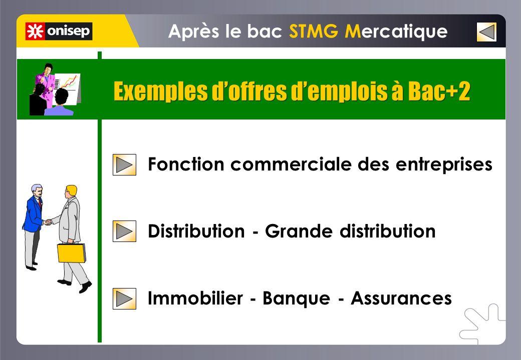 Exemples doffres demplois à Bac+2 Après le bac STMG Mercatique Fonction commerciale des entreprises Distribution - Grande distribution Immobilier - Ba