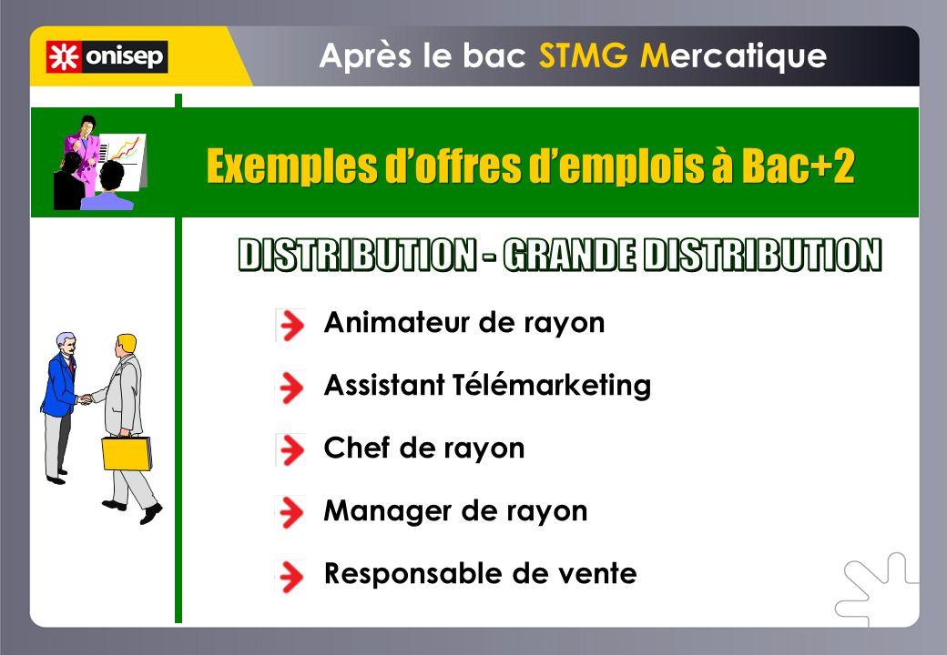 Exemples doffres demplois à Bac+2 Après le bac STMG Mercatique Animateur de rayon Assistant Télémarketing Chef de rayon Manager de rayon Responsable d