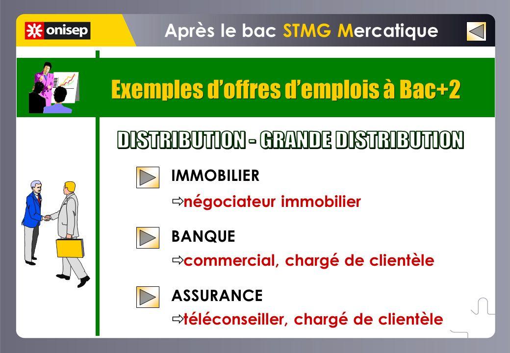 Exemples doffres demplois à Bac+2 Après le bac STMG Mercatique IMMOBILIER négociateur immobilier BANQUE commercial, chargé de clientèle ASSURANCE télé