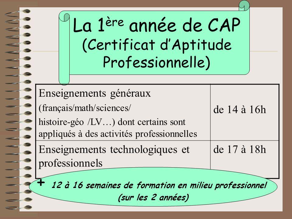 Les diplômes professionnels tels que le bac pro et le CAP peuvent se préparer par lapprentissage.