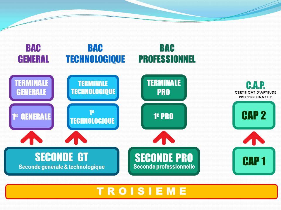 SECONDE PRO Seconde professionnelle T R O I S I E M E SECONDE GT Seconde générale & technologique 1 e PRO TERMINALE PRO CAP 1 CAP 2 BAC GENERAL BAC TE