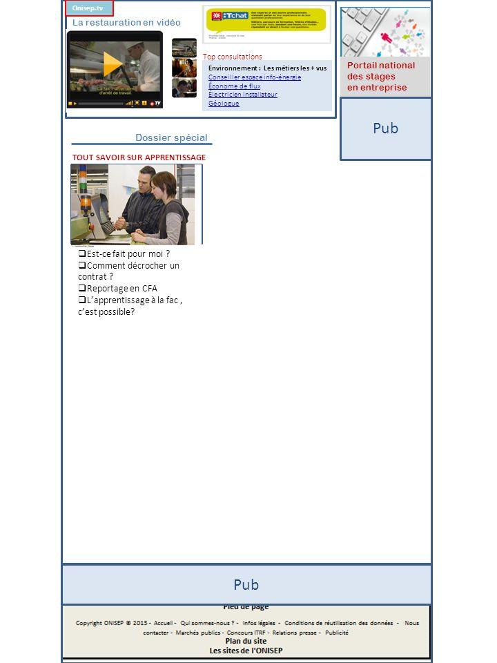 Pub Portail national des stages en entreprise Environnement : Les métiers les + vus Conseiller espace info-énergie Économe de flux Électricien install