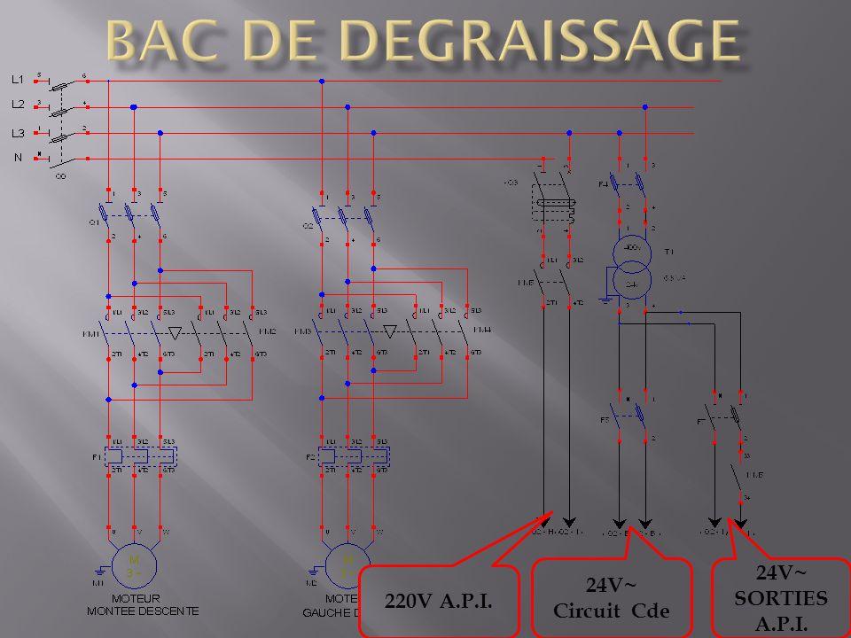 220V A.P.I. 24V~ Circuit Cde 24V~ SORTIES A.P.I.