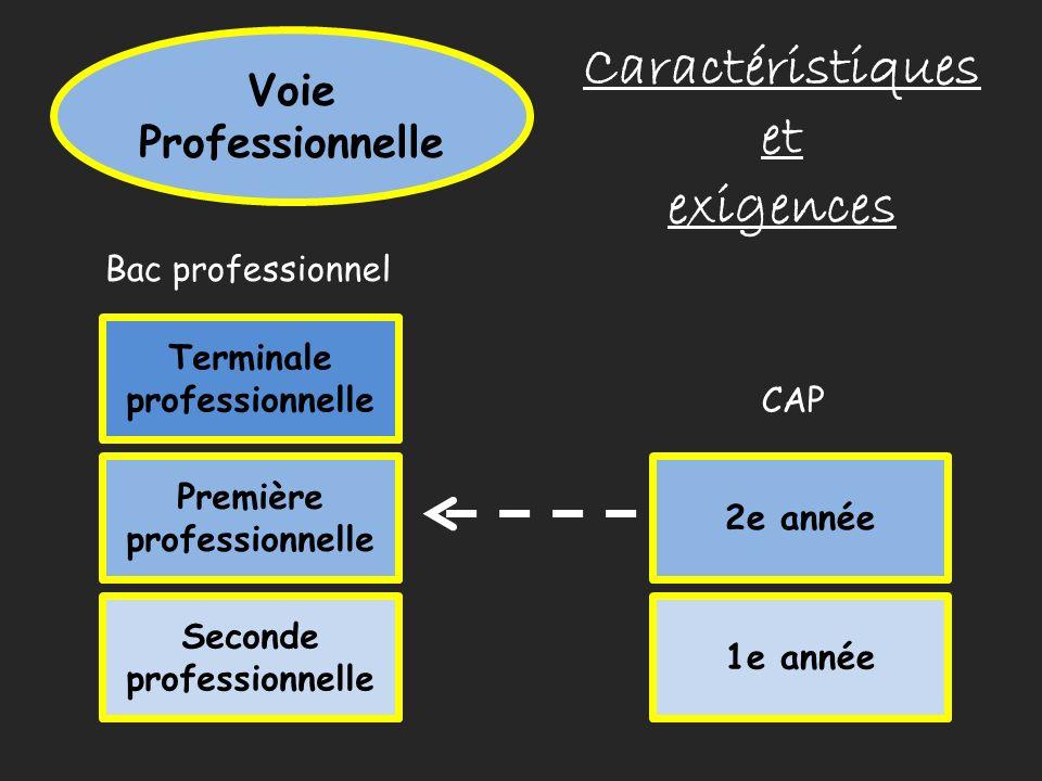 Voie Professionnelle Caractéristiques et exigences Seconde professionnelle Première professionnelle Terminale professionnelle Bac professionnel 1e ann
