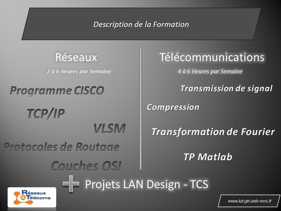 www.iut-gtr.univ-mrs.fr Description de la Formation