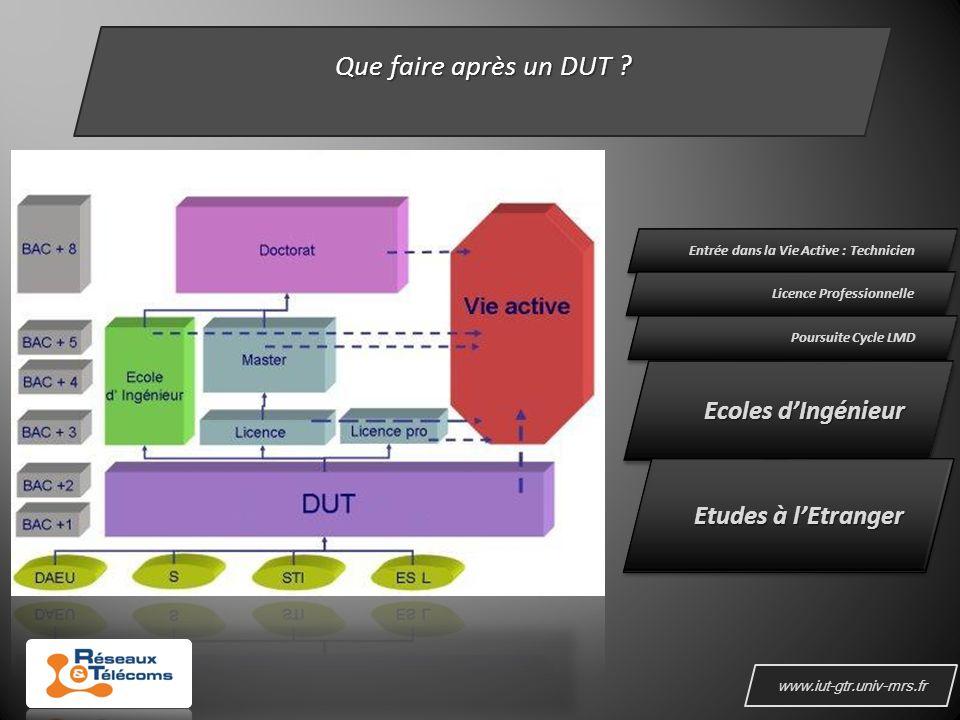 www.iut-gtr.univ-mrs.fr Que faire après un DUT .