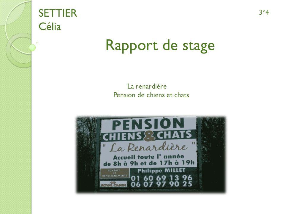 SETTIER Célia 3°4 Rapport de stage La renardière Pension de chiens et chats