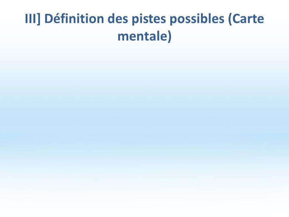 III] Définition des pistes possibles (Carte mentale)