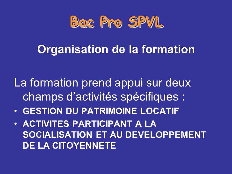 Bac Pro SPVL Organisation de la formation La formation prend appui sur deux champs dactivités spécifiques : GESTION DU PATRIMOINE LOCATIF ACTIVITES PA