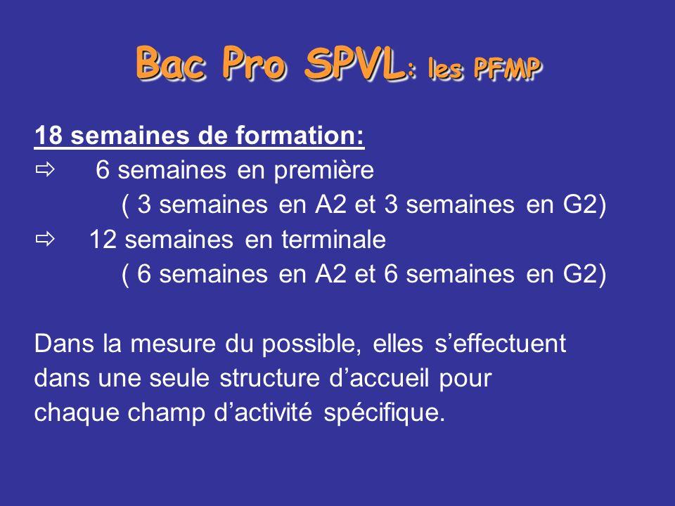 Bac Pro SPVL : les PFMP 18 semaines de formation: 6 semaines en première ( 3 semaines en A2 et 3 semaines en G2) 12 semaines en terminale ( 6 semaines