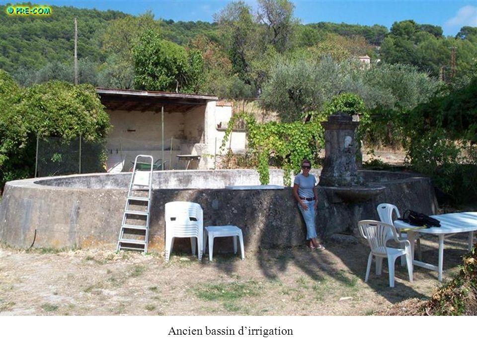 Ancien bassin dirrigation