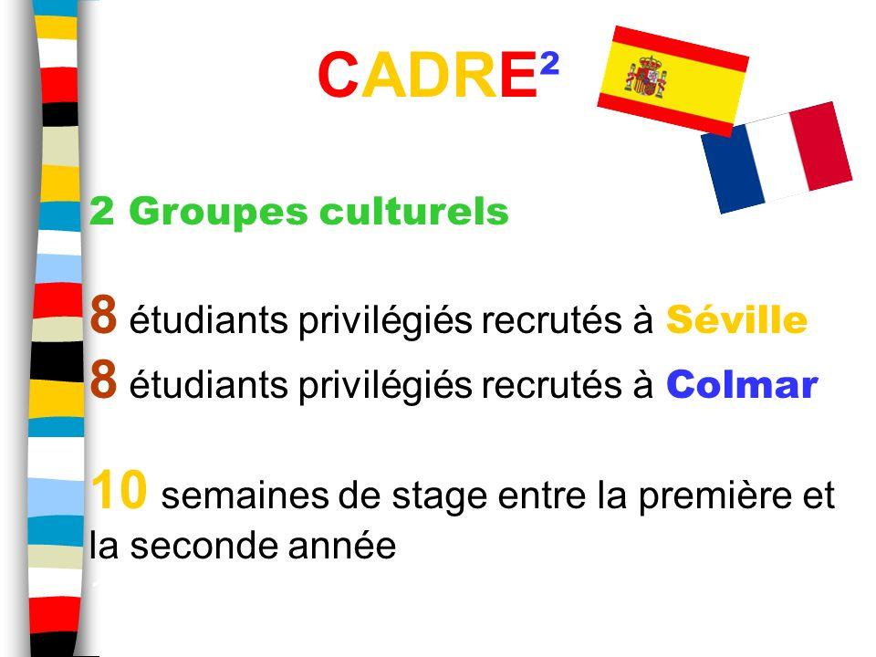 2 Groupes culturels 8 étudiants privilégiés recrutés à Séville 8 étudiants privilégiés recrutés à Colmar 10 semaines de stage entre la première et la