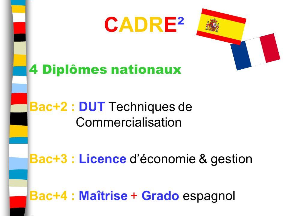 4 Diplômes nationaux Bac+2 : DUT Techniques de Commercialisation Bac+3 : Licence déconomie & gestion Bac+4 : Maîtrise + Grado espagnol. CADRE²