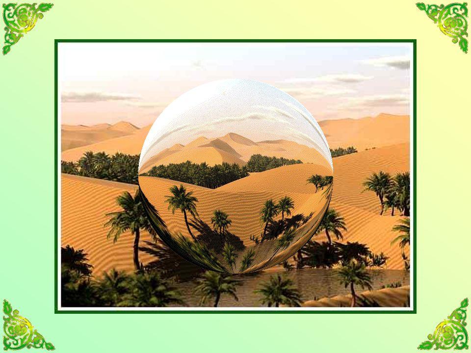 Le désert est un malentendu, un mauvais lit pour le sommeil et le songe, une page blanche pour la nostalgie.