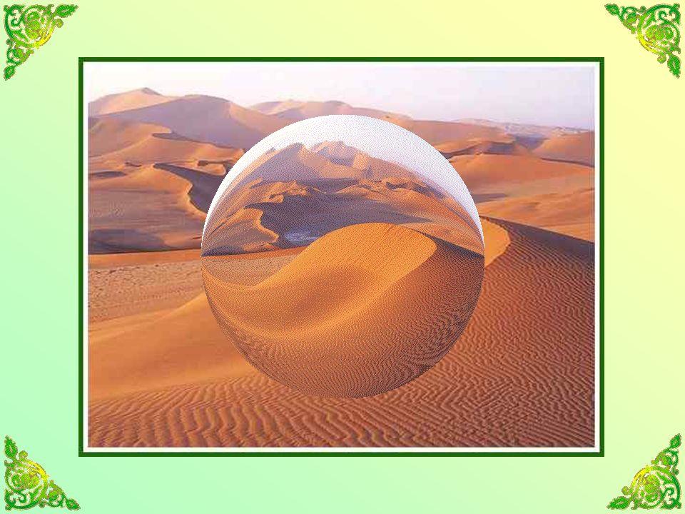 Jai toujours aimé le désert. On sasseoit sur une dune de sable.