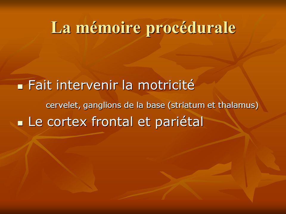 La mémoire procédurale Fait intervenir la motricité Fait intervenir la motricité cervelet, ganglions de la base (striatum et thalamus) Le cortex front