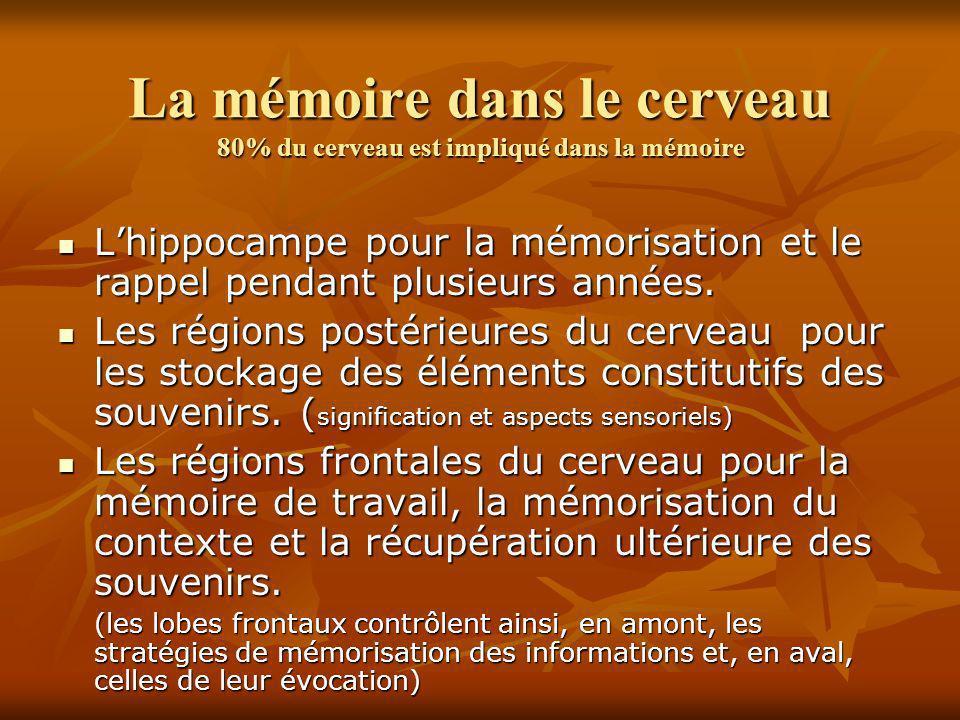 La mémoire dans le cerveau 80% du cerveau est impliqué dans la mémoire Lhippocampe pour la mémorisation et le rappel pendant plusieurs années. Lhippoc