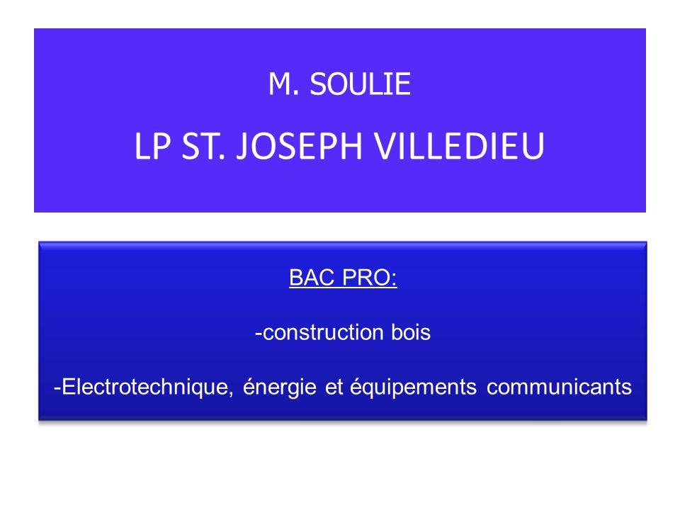 LP ST. JOSEPH VILLEDIEU M. SOULIE BAC PRO: -construction bois -Electrotechnique, énergie et équipements communicants