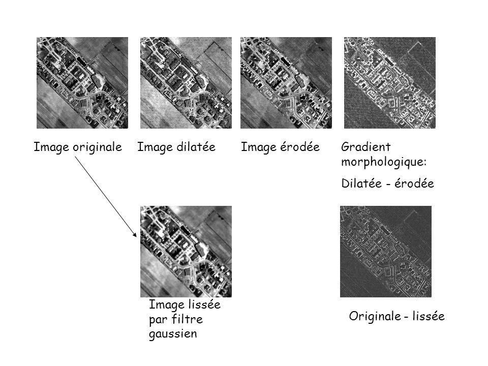 Image originaleImage dilatéeImage érodéeGradient morphologique: Dilatée - érodée Image lissée par filtre gaussien Originale - lissée