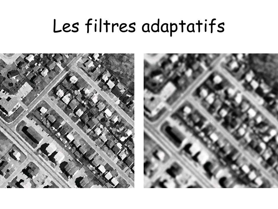 Les filtres adaptatifs