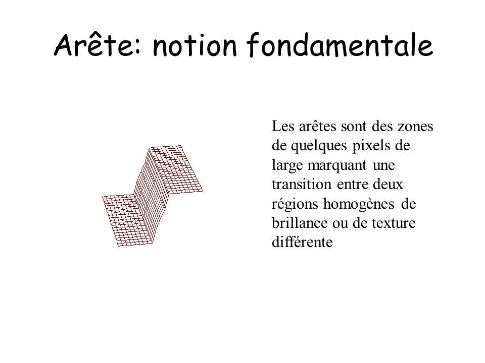 Arête: notion fondamentale Les arêtes sont des zones de quelques pixels de large marquant une transition entre deux régions homogènes de brillance ou