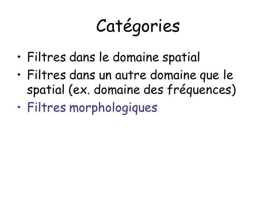 Catégories Filtres dans le domaine spatial Filtres dans un autre domaine que le spatial (ex. domaine des fréquences) Filtres morphologiques
