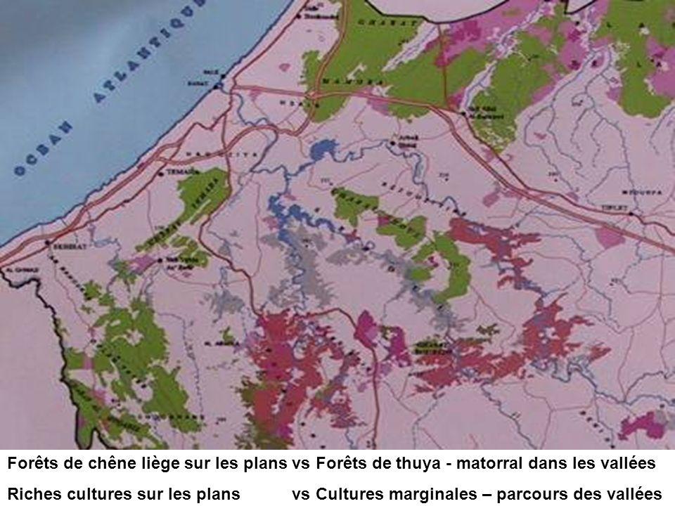 Forêts de chêne liège sur les plans vs Forêts de thuya - matorral dans les vallées Riches cultures sur les plans vs Cultures marginales – parcours des