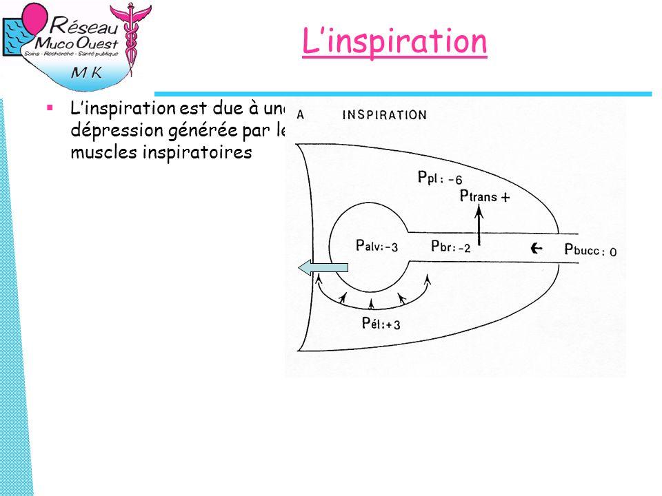 Linspiration Linspiration est due à une dépression générée par les muscles inspiratoires