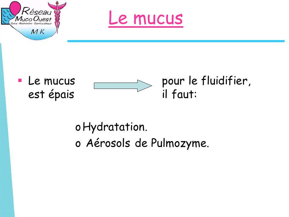 Le mucus Le mucus pour le fluidifier, est épais il faut: oHydratation. o Aérosols de Pulmozyme.