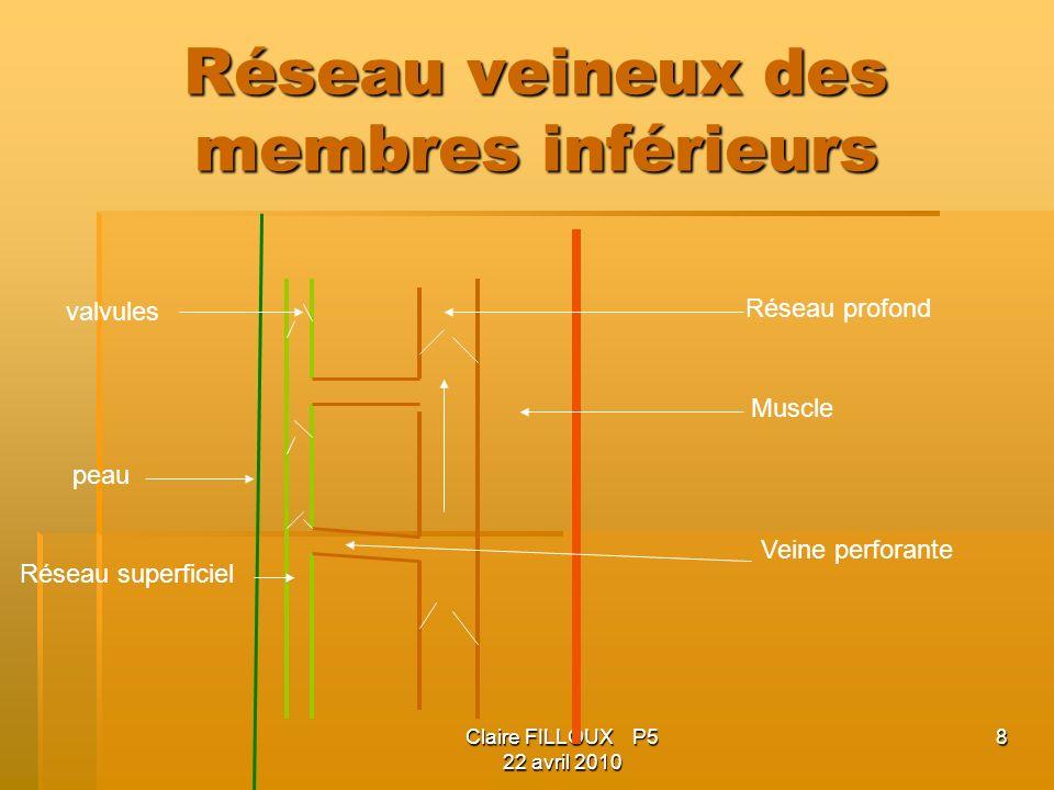 Claire FILLOUX P5 22 avril 2010 8 Réseau veineux des membres inférieurs valvules peau Réseau superficiel Réseau profond Muscle Veine perforante