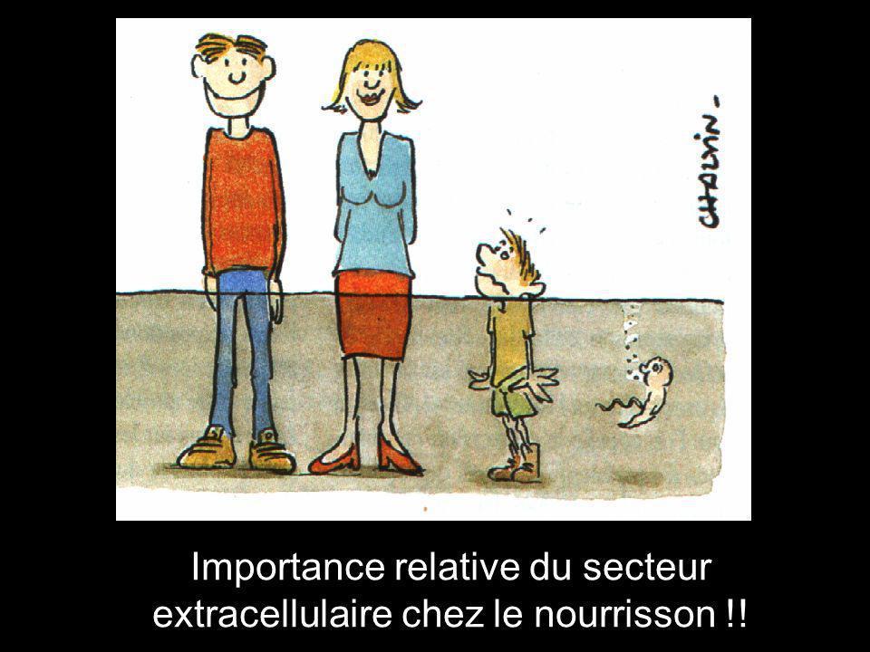 Importance relative du secteur extracellulaire chez le nourrisson !!