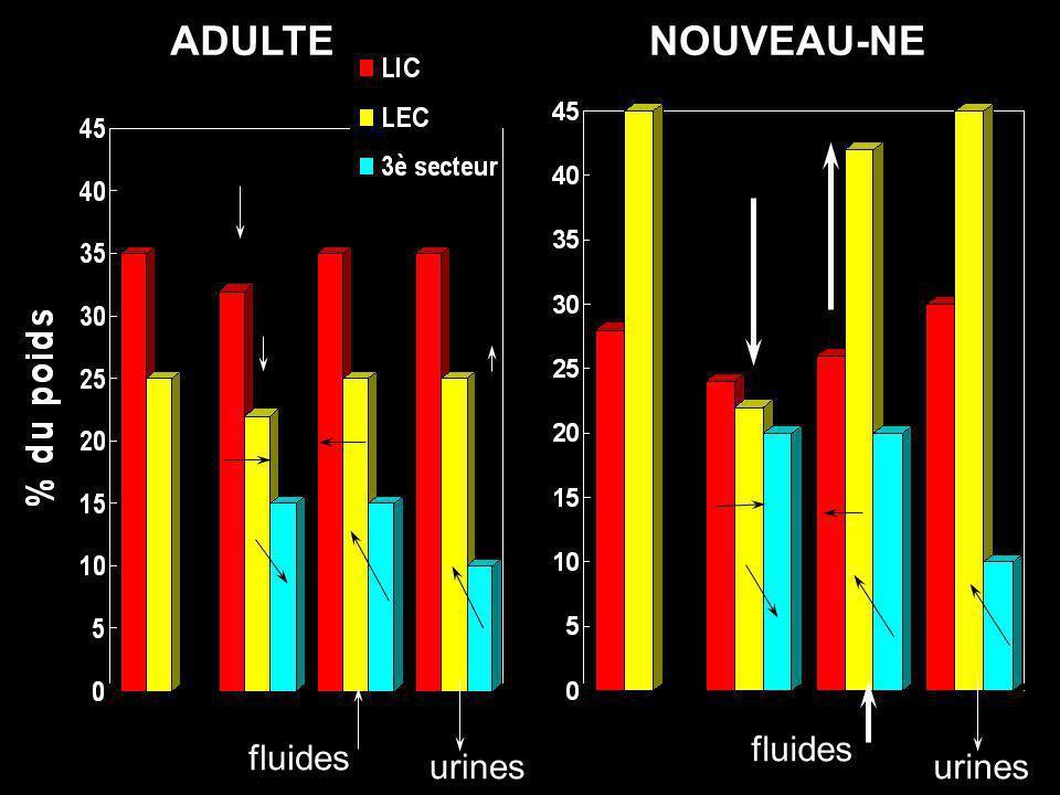 fluides urines ADULTENOUVEAU-NE