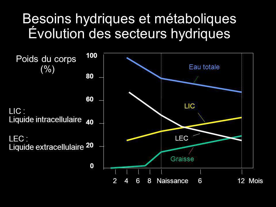20 40 60 80 100 2468612NaissanceMois Poids du corps (%) Eau totale Besoins hydriques et métaboliques Évolution des secteurs hydriques 0 LIC LEC Graisse LIC : Liquide intracellulaire LEC : Liquide extracellulaire