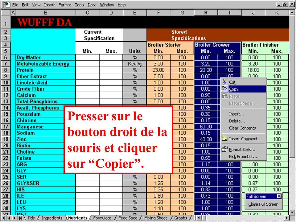 Sélectionner les données à copier en saisissant le bloc correspondant de haut en bas grâce à une pression sur le bouton gauche de la souris.