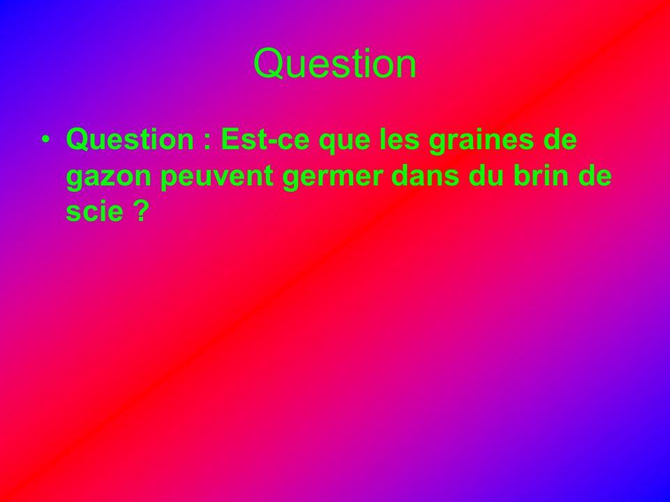 Question Question : Est-ce que les graines de gazon peuvent germer dans du brin de scie ?