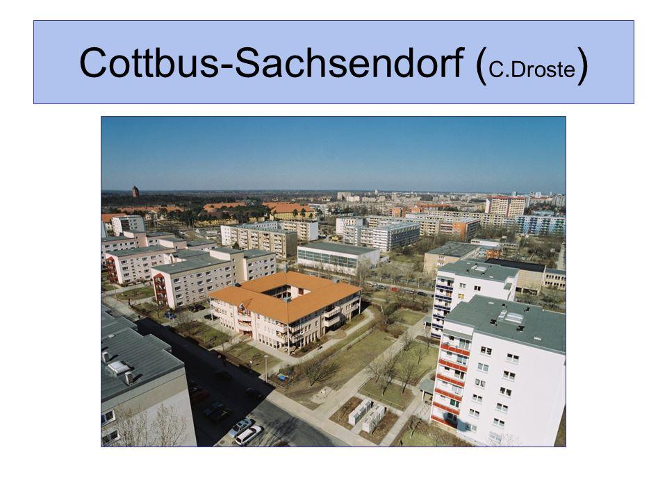 Cottbus-Sachsendorf ( C.Droste )