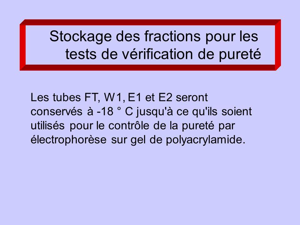 Les tubes FT, W1, E1 et E2 seront conservés à -18 ° C jusqu à ce qu ils soient utilisés pour le contrôle de la pureté par électrophorèse sur gel de polyacrylamide.