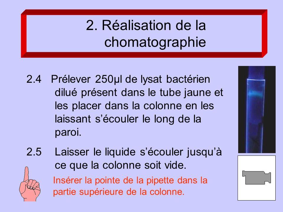 2.4 Prélever 250µl de lysat bactérien dilué présent dans le tube jaune et les placer dans la colonne en les laissant sécouler le long de la paroi.