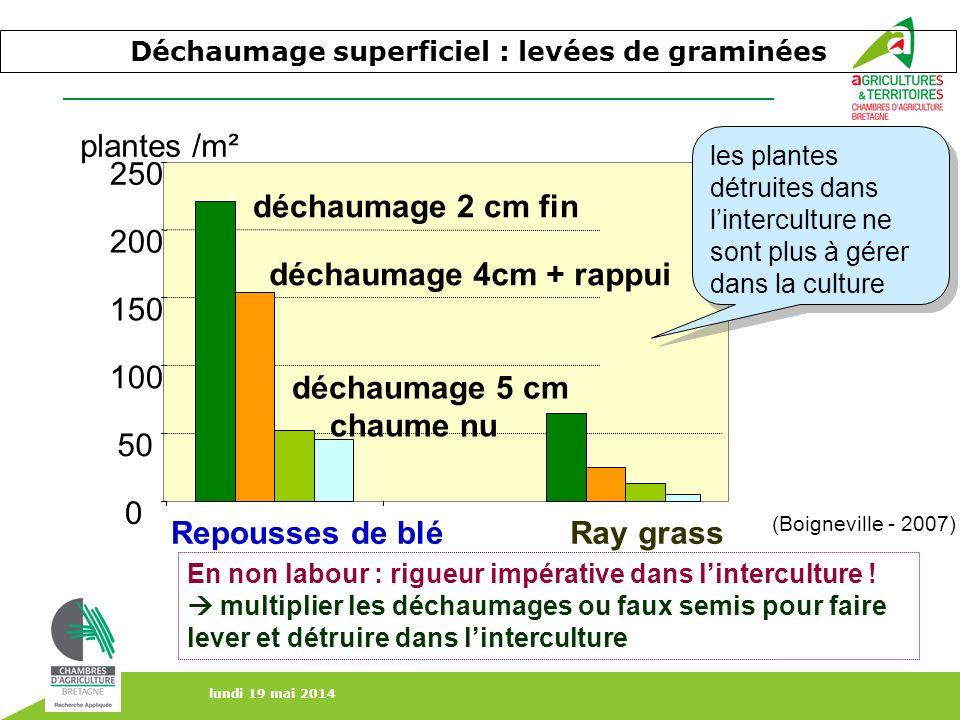 lundi 19 mai 2014 Déchaumage superficiel : levées de graminées 0 50 100 150 200 250 Repousses de bléRay grass plantes /m² déchaumage 2 cm fin déchauma