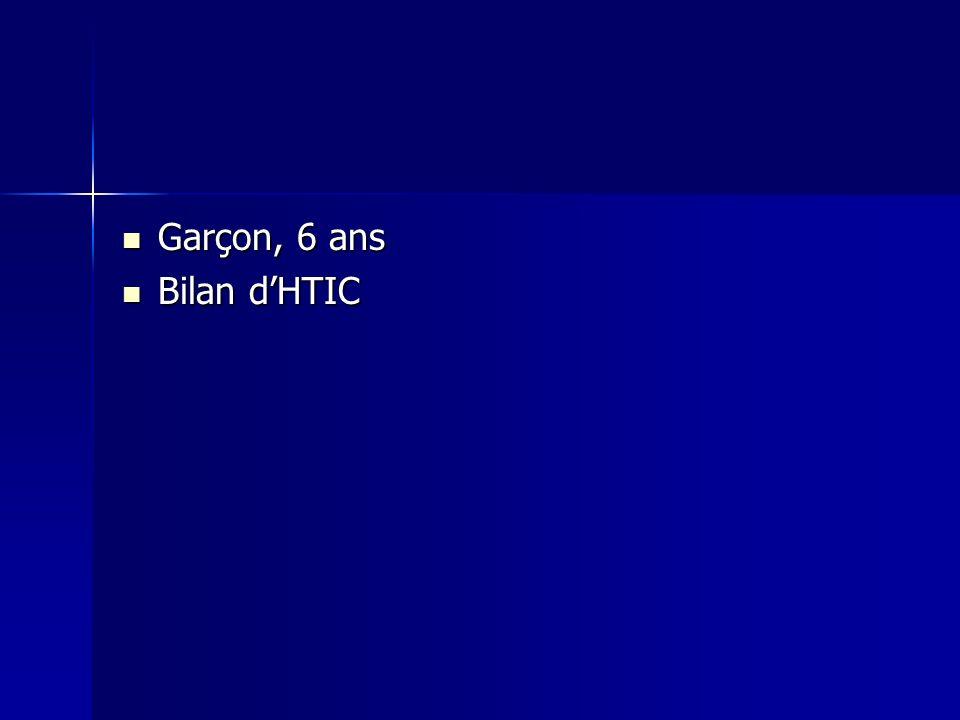 Garçon, 6 ans Garçon, 6 ans Bilan dHTIC Bilan dHTIC