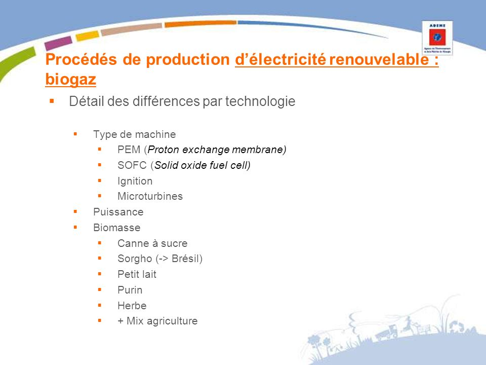 Procédés de production délectricité renouvelable : biogaz Détail des différences par technologie Type de machine PEM (Proton exchange membrane) SOFC (Solid oxide fuel cell) Ignition Microturbines Puissance Biomasse Canne à sucre Sorgho (-> Brésil) Petit lait Purin Herbe + Mix agriculture