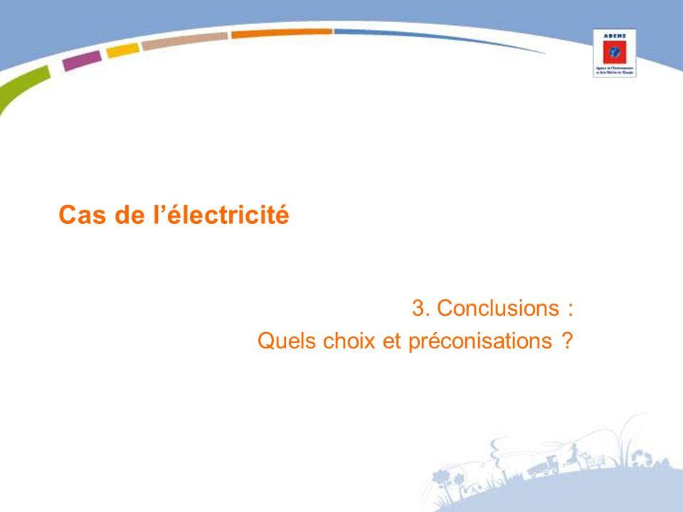 Cas de lélectricité 3. Conclusions : Quels choix et préconisations ?