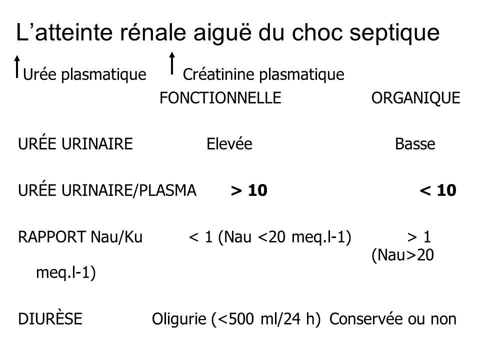 Latteinte rénale aiguë du choc septique Urée plasmatiqueCréatinine plasmatique FONCTIONNELLEORGANIQUE URÉE URINAIREElevée Basse URÉE URINAIRE/PLASMA>