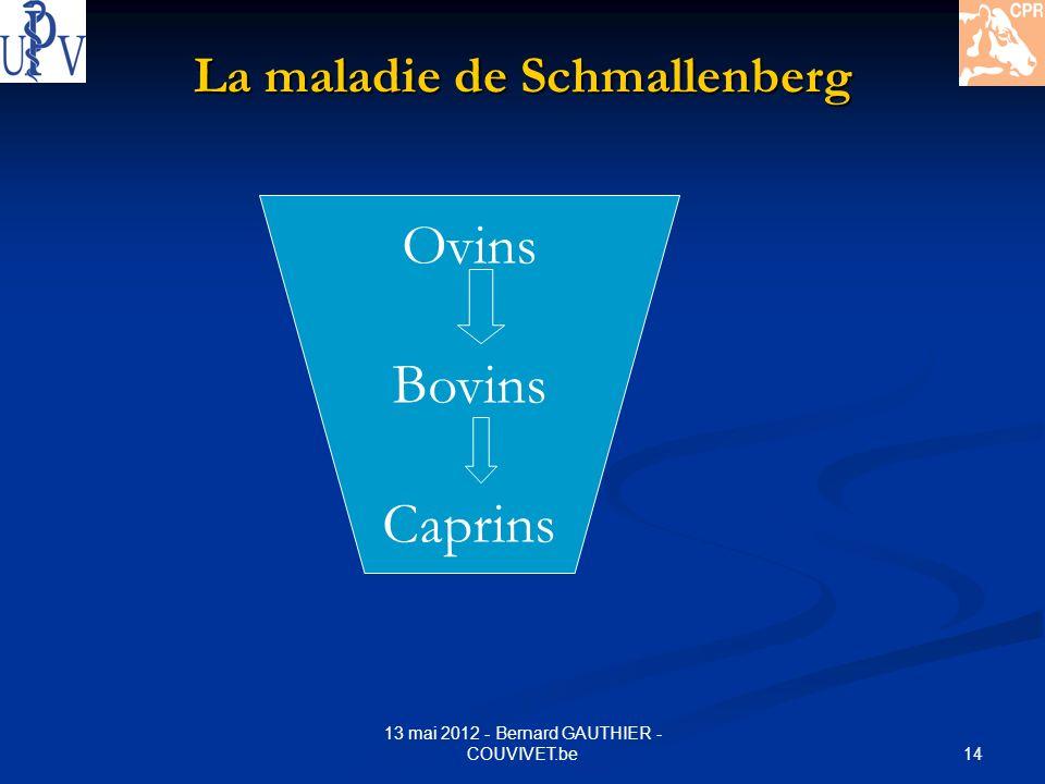 14 13 mai 2012 - Bernard GAUTHIER - COUVIVET.be La maladie de Schmallenberg Ovins Bovins Caprins